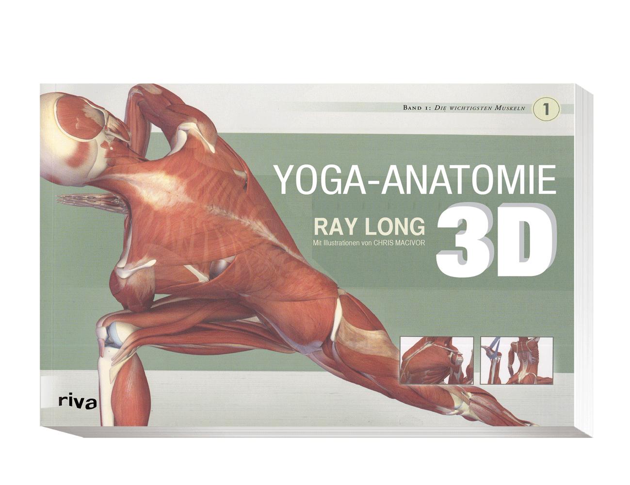 📕 Yogabuch Empfehlung: Yoga Anatomie