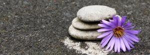 Yoga Startbild Blüte und Steine